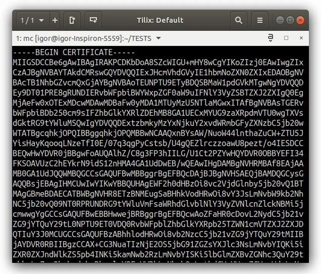 Пример содержимого файла сертификата безопасности